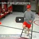 Hokejový trenér