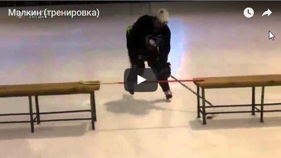 Jevgenik Malkin